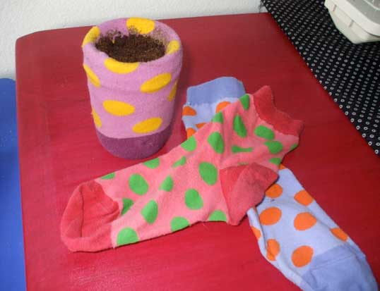 mateless sock planter