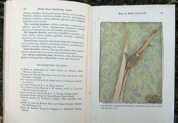 Book Diorama