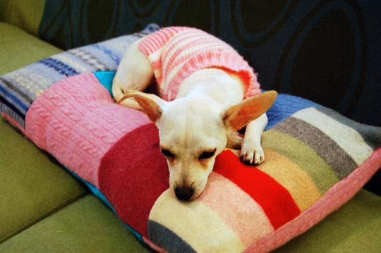 patchwork quilt dog bed made from old sweaters