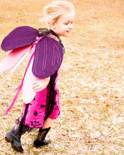 DIY Butterfly Wings or Fairy Wings