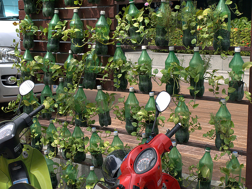 plastic bottled plants in bangkok