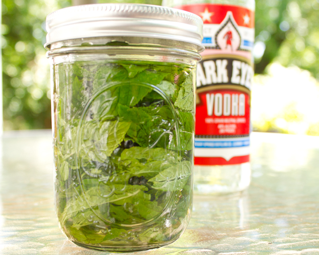 homemade mint extract, ready to steep in a dark place