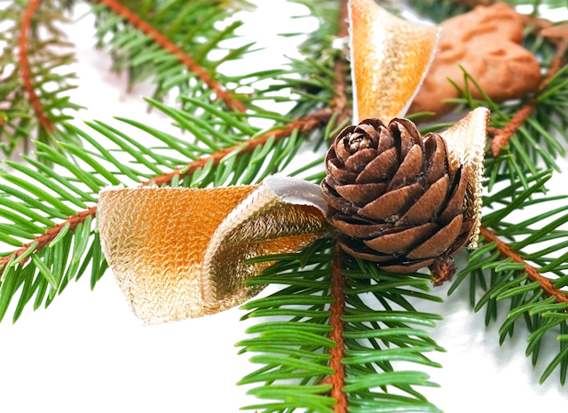 pine cone and cookie ornaments image via Shutterstock