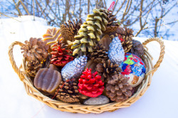 18 Nature Crafts for Christmas