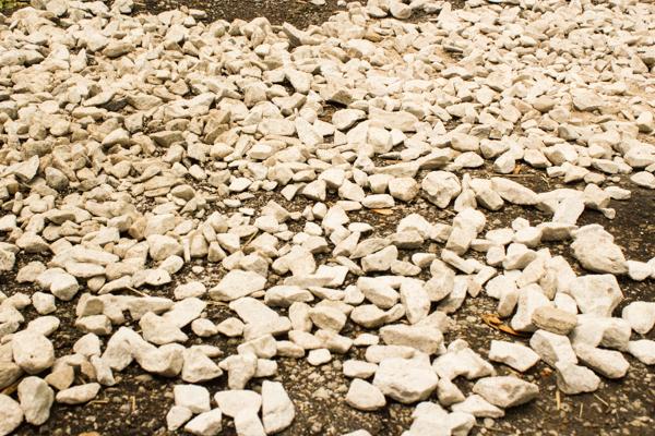 Spread the rocks across bare ground.
