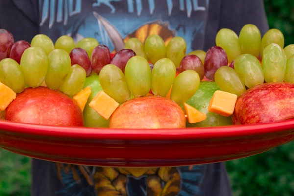 healthy fruit and cheese dinosaurs (5 of 5)