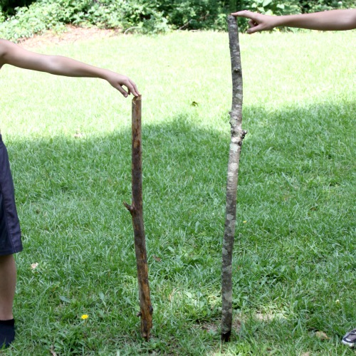 How To: Make a Kid's Walking Stick