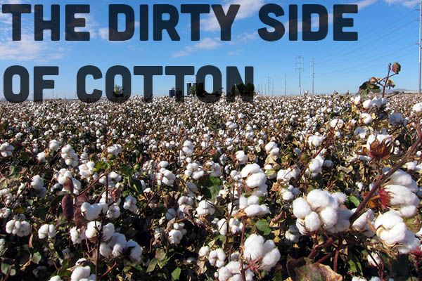 "Cotton: The Dirty Truth about ""The Fabric of our Lives"""