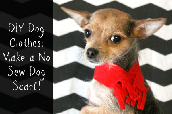 Diy dog clothes make a no sew dog scarf crafting a for How to make a shirt for your dog