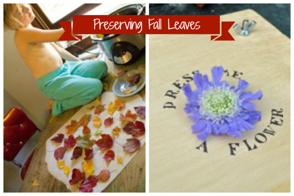 fall crafts preserving fall leaves