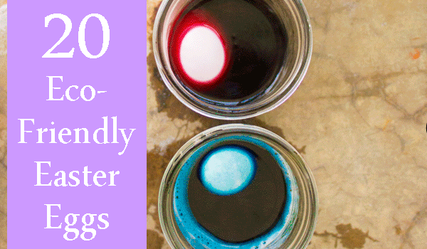 Eco-Friendly Egg Dyeing