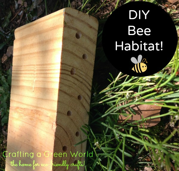 Build a Native Bee Habitat from Scrap Wood 3.31.57 PM
