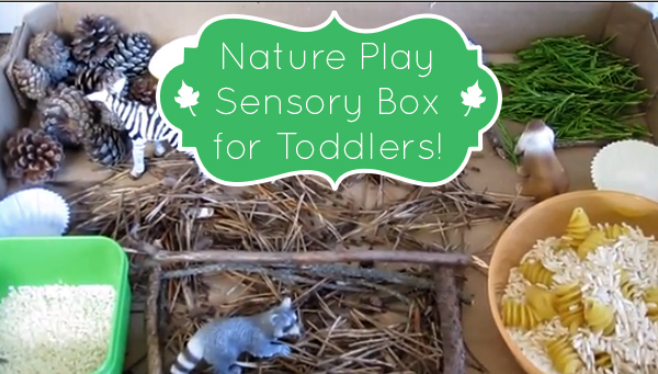 Nature Play for a Rainy Day