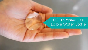 How to Make an Edible Water Bottle