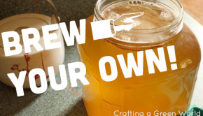 Kombucha Brewing: DIY Home Fermentation