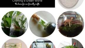 Sweet, Simple, DIY Terrariums