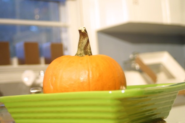 Thanksgiving Recipes: How to Make Homemade Pumpkin Puree