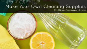 Learn why and how to make your own DIY cleaning products instead of buying them at the store with this handy visual guide!
