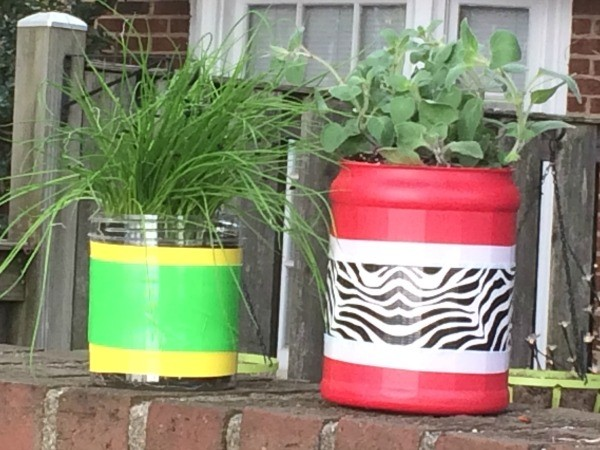 Make a DIY Indoor Herb Garden for Earth Day!