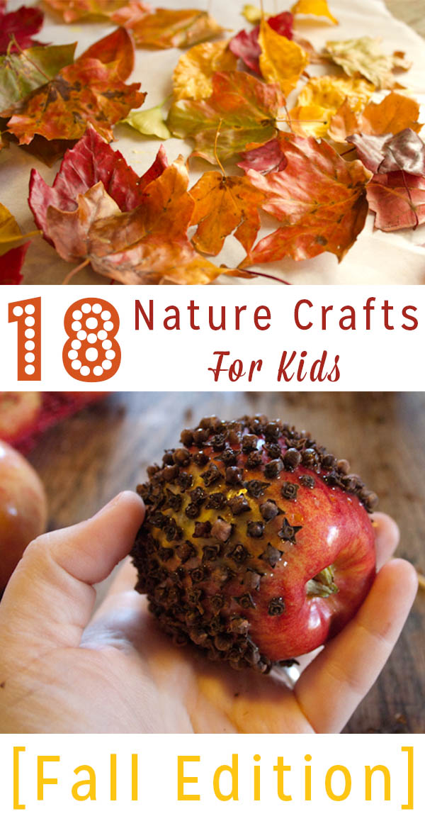 Do you love fall as much as I do? Try some of my favorite fall nature crafts for kids! There are options for an array of age groups.