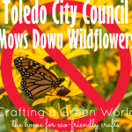 Toledo City Council Mows Down Wildflowers