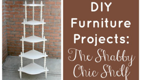 Don't waste your money at big box furniture stores! DIY furniture projects will save you money and are a great way to repurpose furniture you already own (or find at thrift storesand garage sales)!