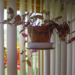 Make an Easy Hanging Planter