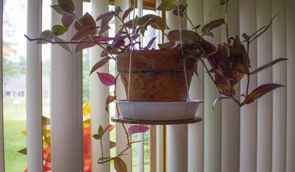 Make an Easy Hanging Planter