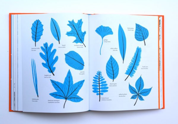 Outside: A Guide to Discovering Natures is a nature book that's perfect for any kid who loves crafting with natural materials or just playing outdoors.