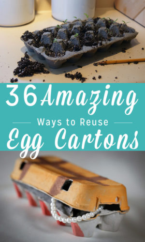 There are LOTS of really cool ways to reuse egg cartons! Here are 36 amazing reasons to save empty egg cartons instead of throwing them away.