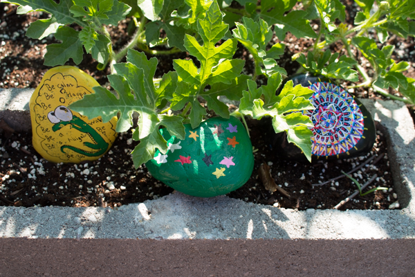 Painted Rocks with Art on the Rocks