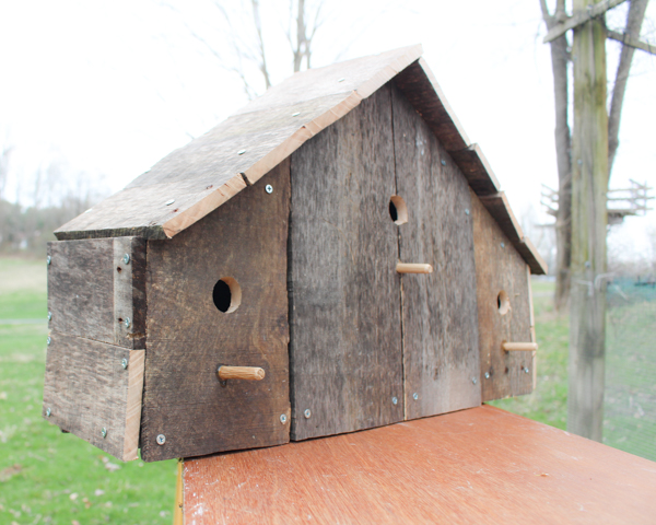 bird house from pallets