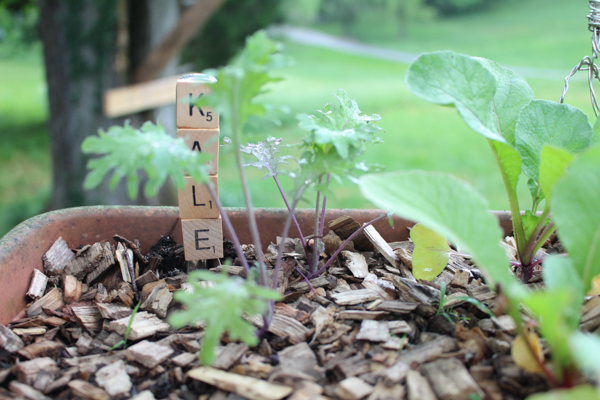 plant markers made with scrabble tiles and a butter knife