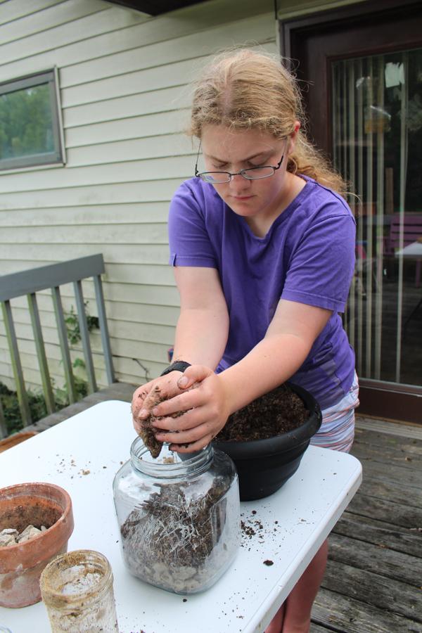 making a fairy garden