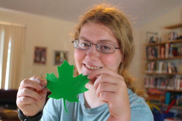 How To Make Realistic Felt Leaf Silhouettes Crafting A Green World