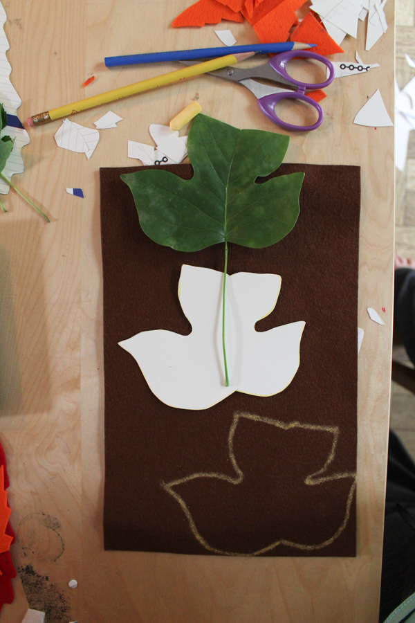 leaf and cardstock on top of felt