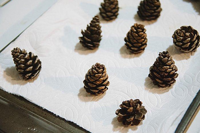 prepped pine cones